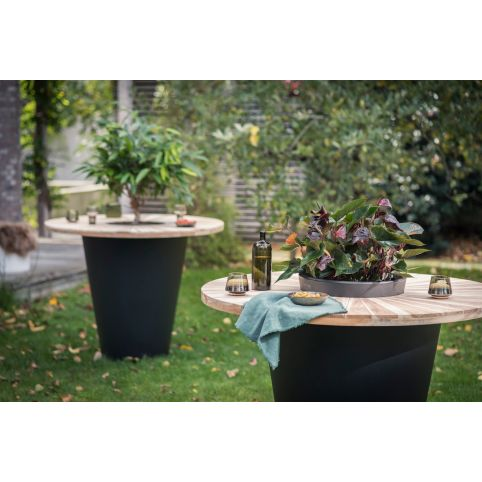 OLLA TABLE VINUM & HERBA